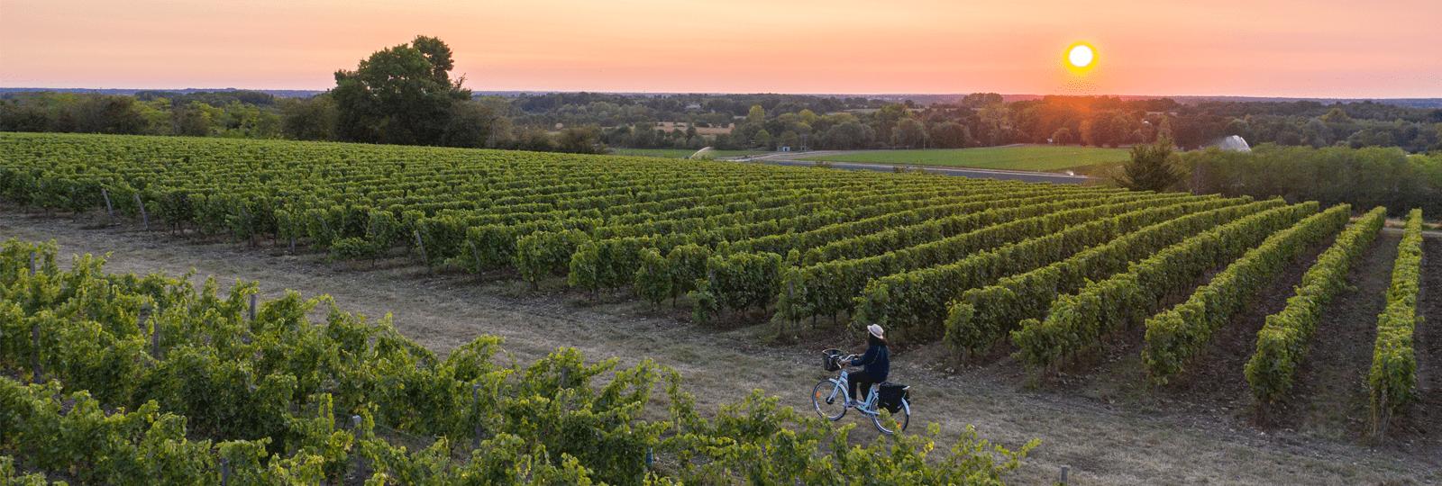 Clo et Clem aux portes de l'Anjou à vélo