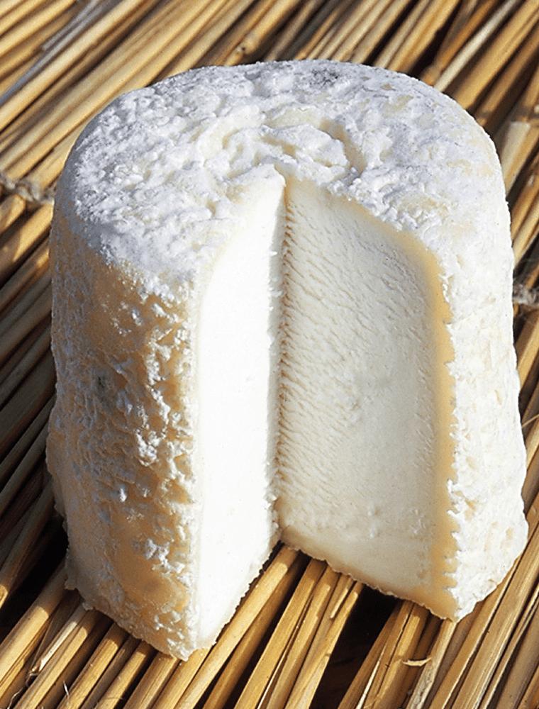 Chabichou fromage de chèvre du Poitou