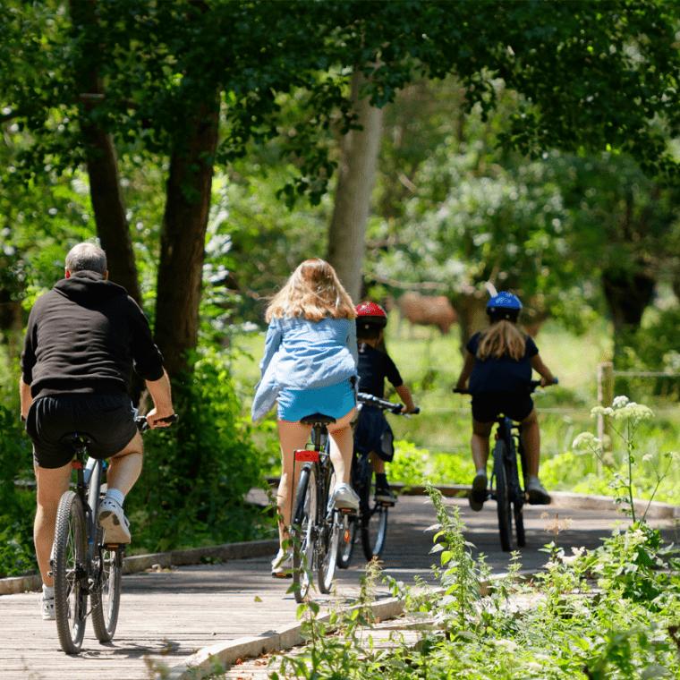 En roue libre dans le Marais poitevin